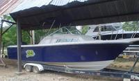 Vendo Lancha wellcraft 250 Costal
