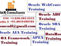 Online Training Provided For Most Demanding Oracle Modules by Expert Trainers - Cursos y Capacitación - Todo Estados Unidos